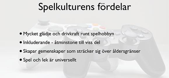 Förel_KvinnaSkaraborg_19